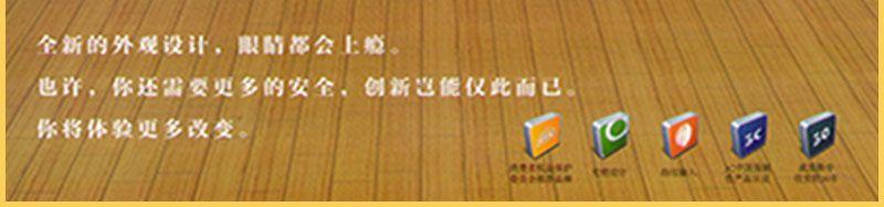 乐虎国际电子游戏威盾斯保险柜保险箱-黄金指_03.jpg