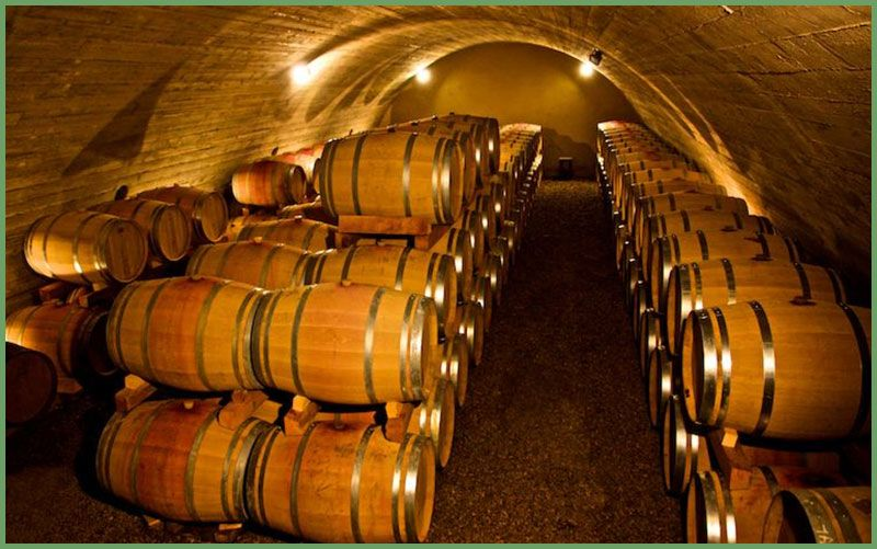 法国葡萄酒发酵场景.jpg