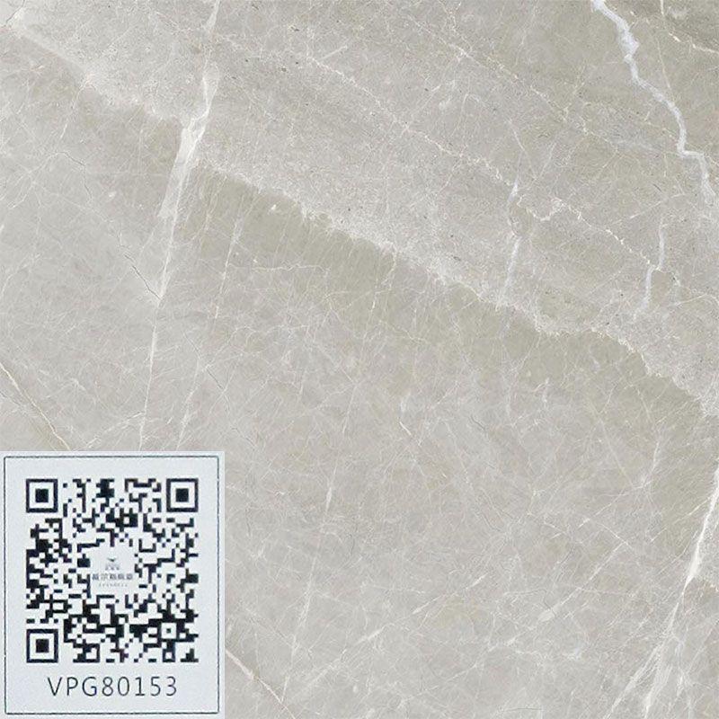 广东佛山威尔斯陶瓷VPG80153.jpg