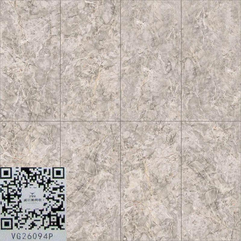 广东佛山威尔斯陶瓷VG26094P.jpg
