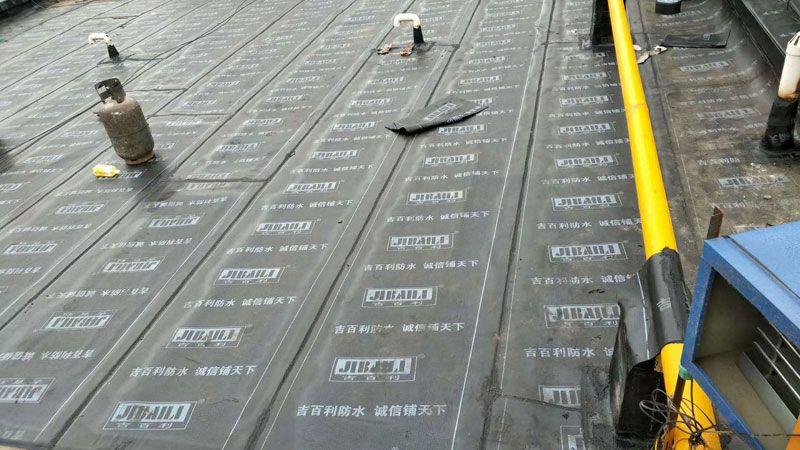 防水工程实拍-1.jpg