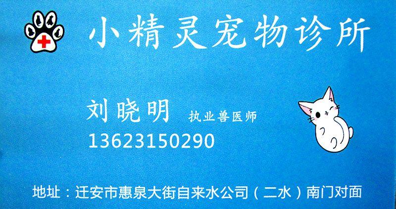雷竞技app下载苹果小精灵宠物诊所-刘晓明-职业兽医师.jpg