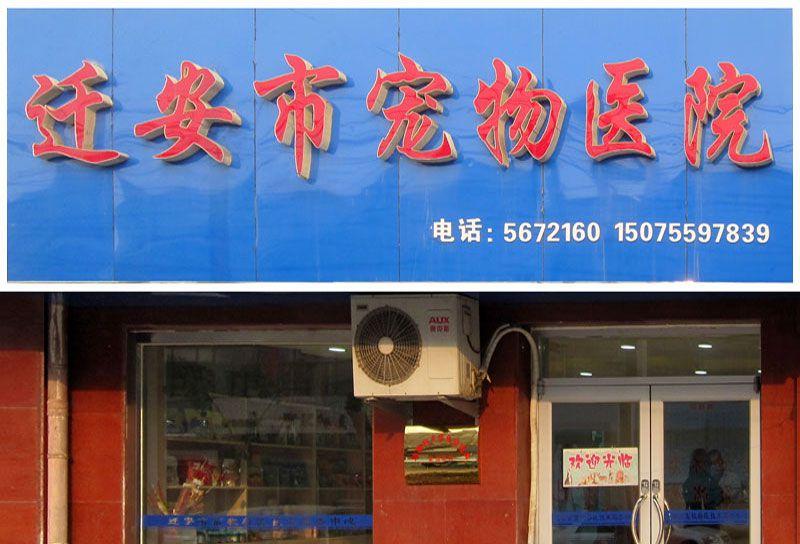 乐虎国际电子游戏市宠物医院.jpg