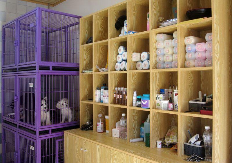 乐虎国际电子游戏市宠物医院-12-宠物专用浴巾及洗浴用品-寄养的宠物.jpg