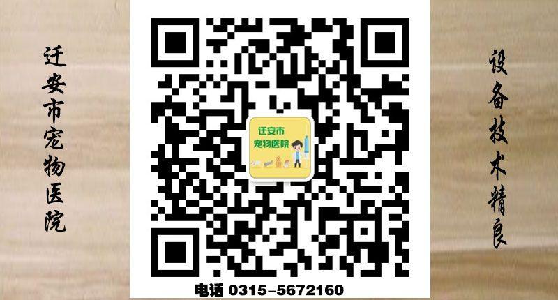 乐虎国际电子游戏市宠物医院-二维码.jpg
